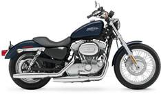 Sportster auctions